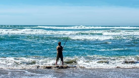 best-surf-fishing-rod-and-reel-combo