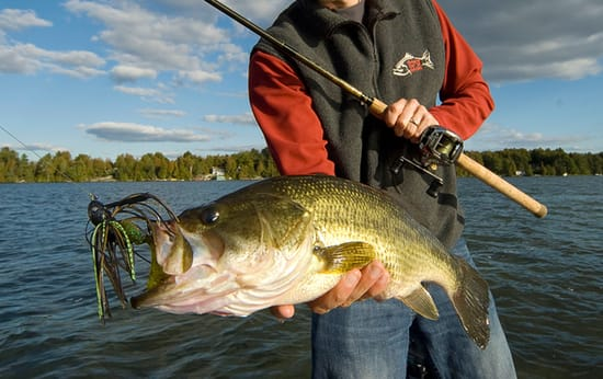buying-guide-for-bass-fishing-combos