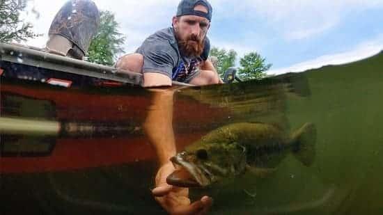 best-bass-fishing-rods