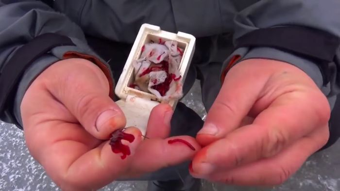 Ice Fishing First Aid Kit